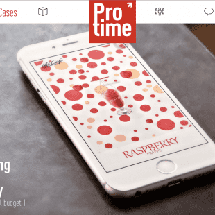 IProTime Consulting